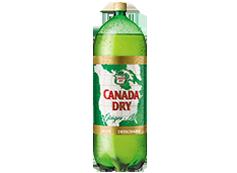 Botella Ginger Ale 3 L