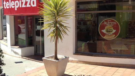 Establecimiento Telepizza SANLUCAR (CUEVAS) (CA)