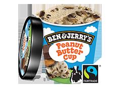 Peanut Buttercup (500ml)