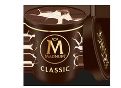 Tarrina Magnum Classic (450ml)