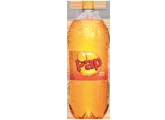 Botella Pap 3 L