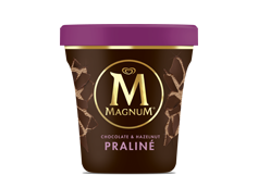 Tarrina Magnum Praliné (440 ml