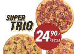 24,90 zł pizza duża do 4 skł. x 3