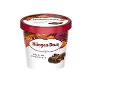 Haagen-Dazs Chocolate Belga