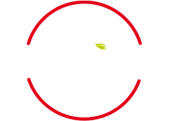 my telepizza